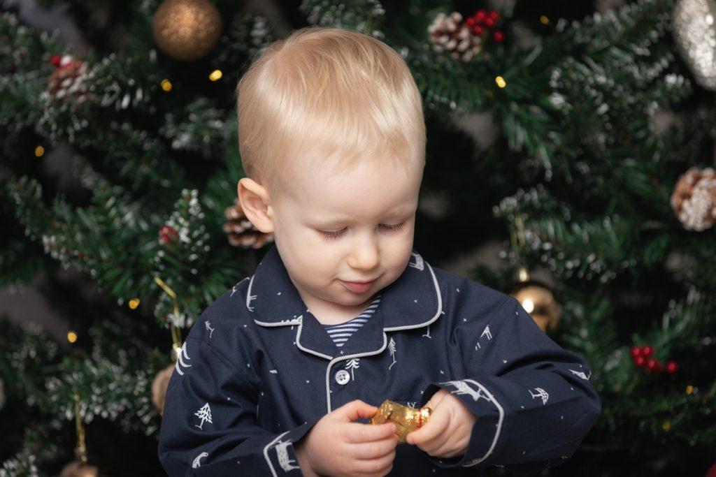 Hoddesdon Christmas Photo Shoot-3