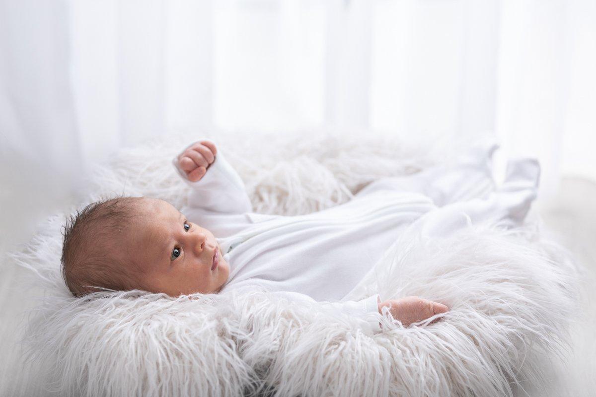 Hertford Newborn Photographer